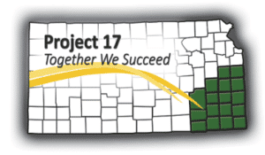 Project 17 — Together we succeed